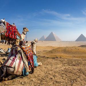 Circuit Egipt, Israel si Iordania 2020