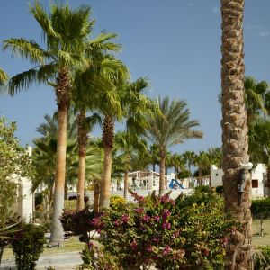 Hotel Coral Beach Resort Hurghada