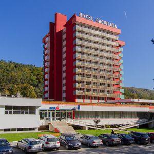 Sarbatori de Iarna la Complex Hotelier Cozia Corp Caciulata