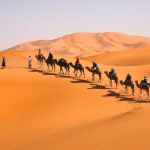 Maroc 2019 - Circuit Marrakech si Sahara