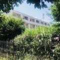 Hostel Perla Costinesti Costinesti